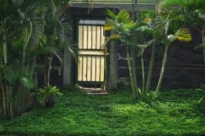 Budvar bejárati ajtó