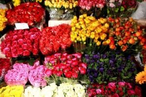 Virágküldés Debrecenben