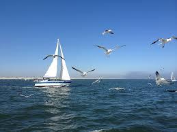 Rövid hajóvezetői tanfolyam