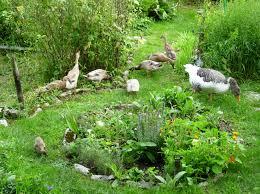 Felkapott a bio kertészkedés